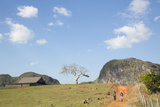 Cuba  Vinales  Valley with Tobacco Farms and Karst Hills