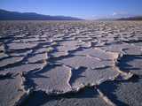 California  Death Valley National Park  Polygonal Patterns