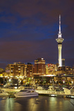 Auckland  North Island  New Zealand