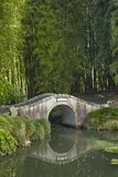 Chinese Scholar's Garden  Hamilton  Waikato  North Island  New Zealand