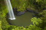 Bridal Veil Falls  Near Raglan  Waikato  North Island  New Zealand