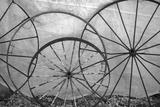 USA  Florida  Plant City  Old Metal Wagon Wheels