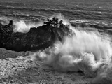 California  Big Sur  Big Wave Crashes Against Rocks and Trees at Julia Pfeiffer Burns State Park