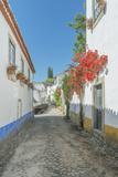 Portugal  Obidos  Cobblestone Street in the Historic Center at Dawn