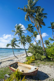 Palm Fringed White Sand Beach on an Islet of Vava'U  Tonga  South Pacific
