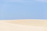 USA  California  Oceano Dunes Svra  Oso Flaco State Park