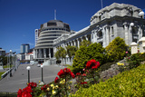 The Beehive and Parliament House  Wellington  North Island  New Zealand