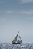 USA  Massachusetts  Cape Ann  Gloucester  America's Oldest Seaport  Annual Schooner Festival