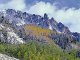 USA  Colorado  Uncompahgre National Forest  Fall Snow on Ophir Needles Above Aspen and Conifers