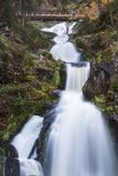 Germany  Baden-Wurttemburg  Black Forest  Triberg  Triberg Waterfalls  Germany's Highest Waterfalls
