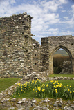 United Kingdom  Wales Cymer Abbey in Gwynedd  a Welsh Historic Monument of Cadw