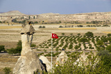 Turkey  Cappadocia Turkish Flag Is Flying over Pomegranate Orchards