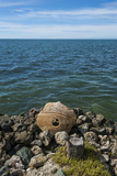 Stone Money on the Island of Yap  Micronesia