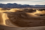 USA  California  Death Valley National Park  Mesquite Flat Dunes after Rain