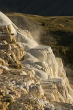 Morning  Terraces  Canary Spring  Mammoth Hot Springs  Yellowstone National Park  Wyoming  USA