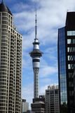 Skytower and High Rise Office Buildings  Auckland Cbd  North Island  New Zealand