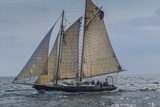USA  Massachusetts  Cape Ann  Gloucester  America's Oldest Seaport  Annual Schooner Festival