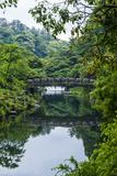 Stone Bridge with Flowers in Seogwipo  Island of Jejudo  South Korea