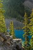 Morning  Moraine Lake  Canadian Rockies  Banff National Park  Alberta  Canada