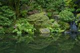 Summer  Portland Japanese Garden  Portland  Oregon  USA