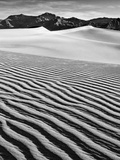 USA  California  Death Valley National Park  Early Morning Sun Hits Mesquite Flat Dunes