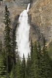 Takkakaw Falls  Yoho National Park  British Columbia  Canada