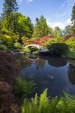 Washington  Seattle  Kubota Gardens  Spring Flowers and Moon Bridge in Reflection