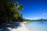 White Sand Beach and Turquoise Water at the Nanuya Lailai Island  the Blue Lagoon  Yasawa  Fiji