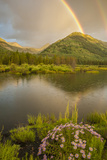 USA  Colorado  Gunnison National Forest Rainbows over Slate River Valley