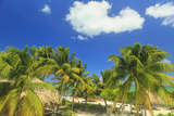Saint Georges Caye Resort  Belize  Central America