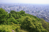 The View Out over Sapporo City from the Summit of Mt Maruyama  Hokkaido  Japan
