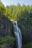 Salt Creek Falls  Willamette National Forest  Oregon  USA