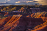 The Fiery Red Painted Desert from Lacey Point in Petrified Forest National Park  Arizona