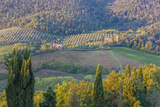 Typical Rolling Hills Landscape Tuscany  Italy