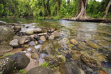 The Upper Reaches of Babinda Creek Is a Popular Spot for Swimming in Queensland  Australia