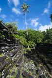 Ruined City Nan Madol  Pohnpei  Micronesia  Central Pacific