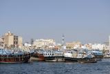 Trading Dhows on the Docks of Dubai Creek  Deira  Dubai  United Arab Emirates  Middle East