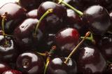USA  Oregon  Keizer  Dark Cherries