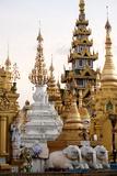 Shrines and Pagodas at Shwedagon Pagoda  Yangon
