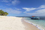 Beachcomber Island  Mamanuca Islands  Fiji  South Pacific  Pacific