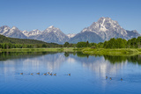 Small Lake in Grand Teton National Park  Wyoming  United States of America  North America