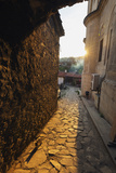 Alley Cat at Sunset  Safranbolu  Central Anatolia  Turkey  Asia Minor