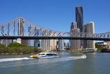 Story Bridge and City from New Farm Riverwalk  Brisbane  Queensland  Australia  Oceania