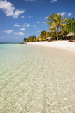 Turquoise Sea and White Palm Fringed Beach  Le Morne  Black River  Mauritius  Indian Ocean  Africa