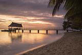 Jetty on Leleuvia Island at Sunset  Lomaiviti Islands  Fiji  South Pacific  Pacific