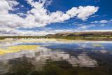Lake Titicaca  Puno Region  Peru  South America
