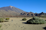 Teide Volcano  Teide National Park  Tenerife  Canary Islands  Spain  Europe