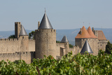 The Medieval Walled Town of Carcassonne  Languedoc-Roussillon  France  Europe
