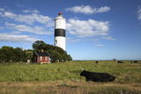 Lange Jan Lighthouse  Ottenby  Southern Oland  Oland  Baltic Coast  Southeast Sweden  Sweden