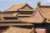 Rooftops  Forbidden City  Beijing  China  Asia